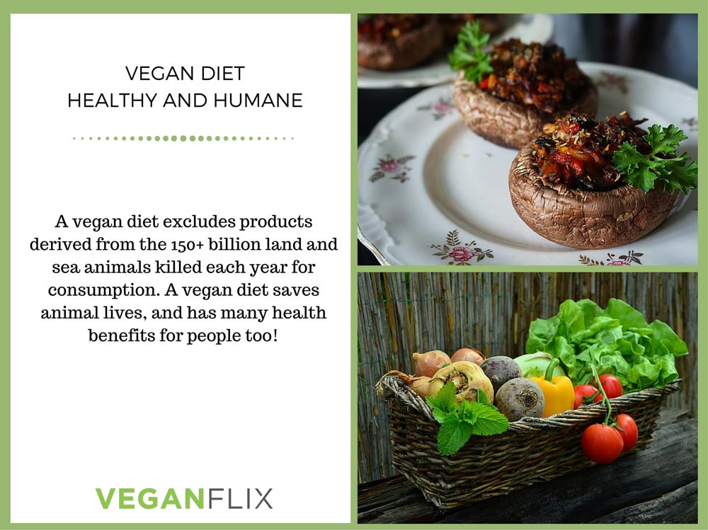 the-health-benefits-of-a-vegan-diet-2