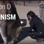 Kat Von D about Veganism | VeganFlix