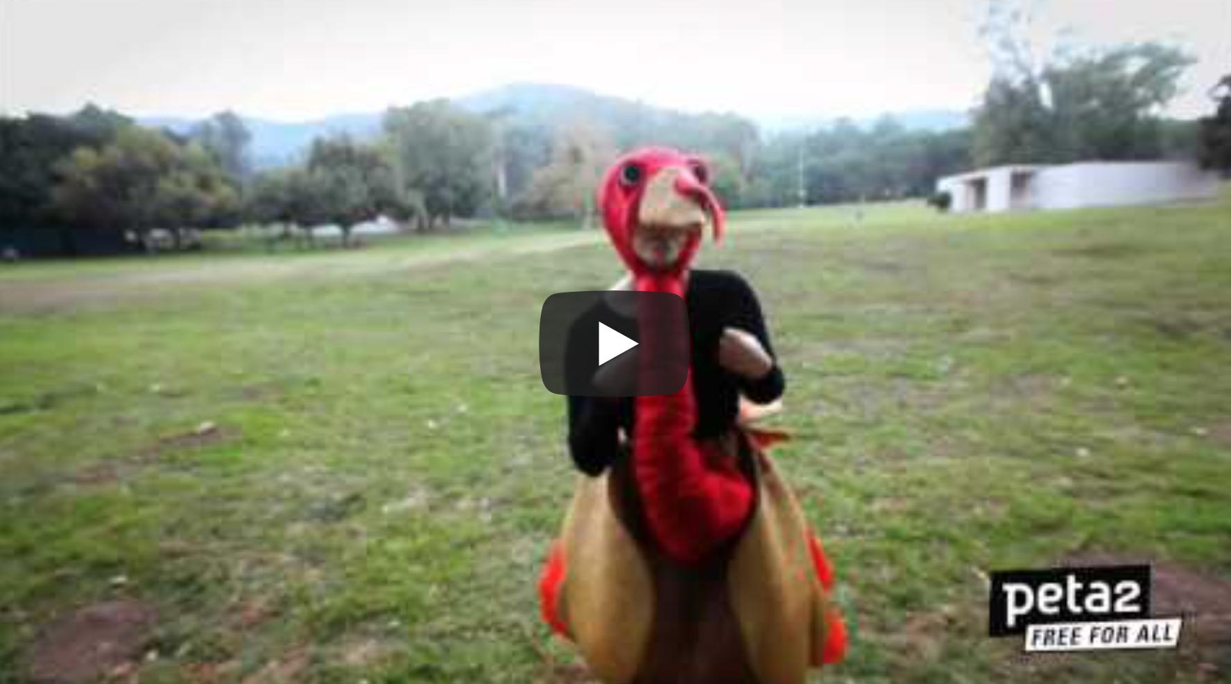 Gobble Gobble -- Go Vegan | VeganFlix