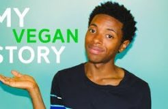 Why I Became A Vegan And How I Transitioned To A Vegan Lifestyle