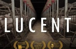 Lucent (2014) - full documentary