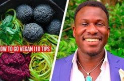How To Go Vegan! | 10 Tips