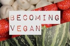 Becoming Vegan (Short Documentary)
