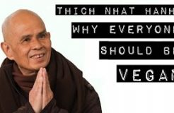 Thich Nhat Hanh: Why everyone should be Vegan.